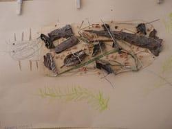 koecherfliegenlarve2
